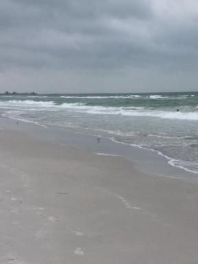 blog ocean 2