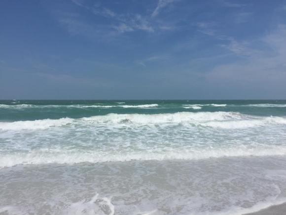blog ocean