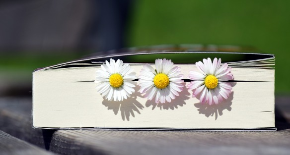 book with daisies